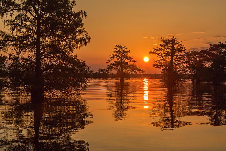 Agua Photograph - Usa, Louisiana, Lake Martin by Jaynes Gallery