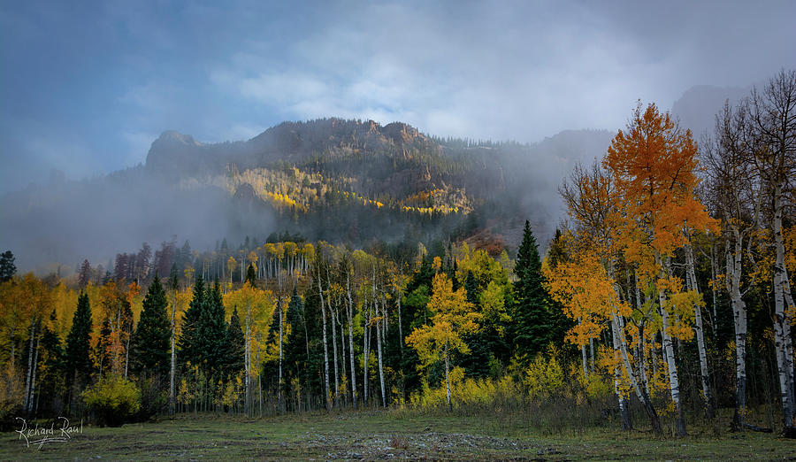 Aspen Menagerie by Richard Raul Photography