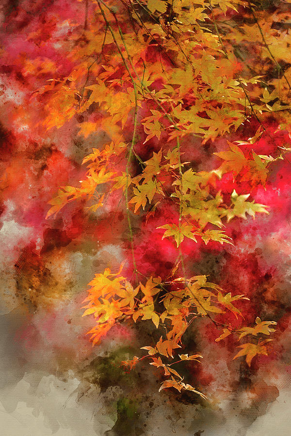 Autumn Photograph - Digital Watercolor Painting Of Beautiful Colorful Vibrant Red An by Matthew Gibson