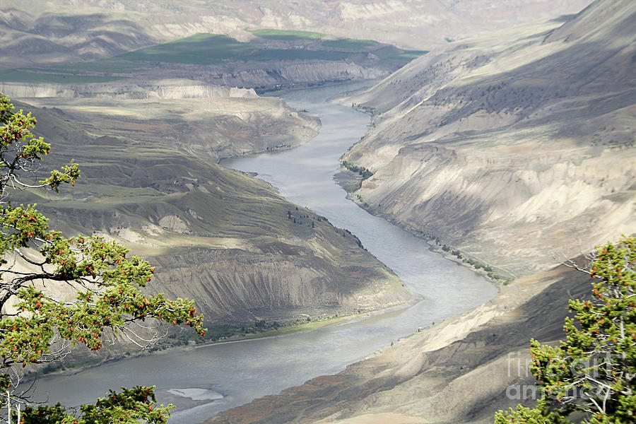 Fraser River by Roland Stanke