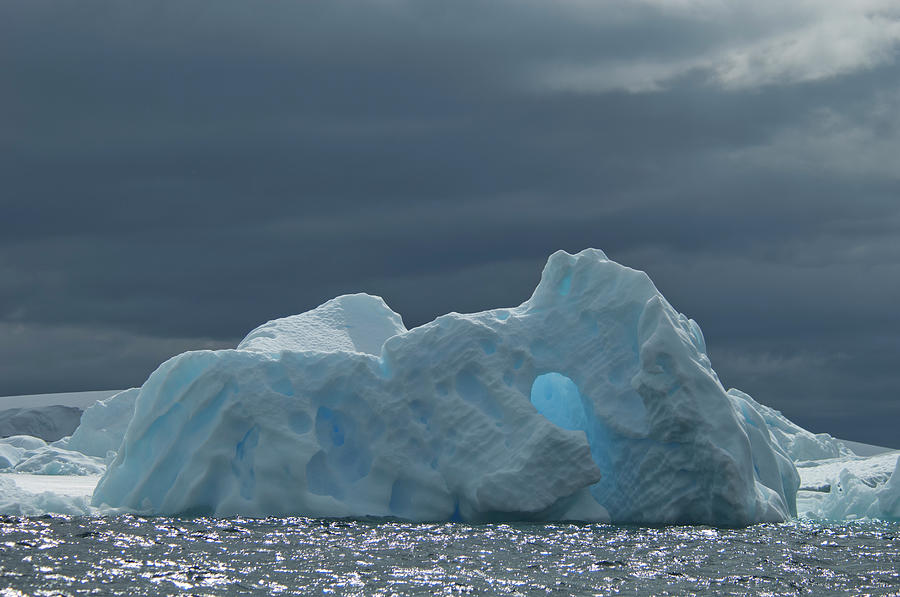 Iceberg Along The Antarctic Peninsula Photograph by Mint Images - David Schultz