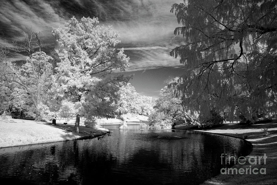 Infrared by FineArtRoyal Joshua Mimbs