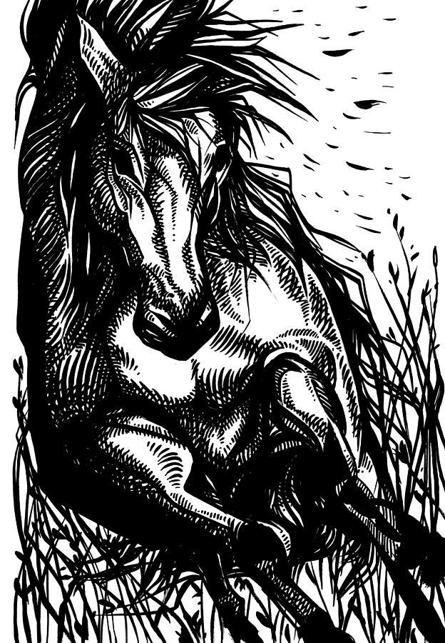 Wild by Enrique Zaldivar
