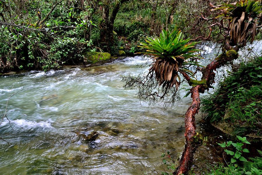 National Park Huascaran. - Peru Photograph