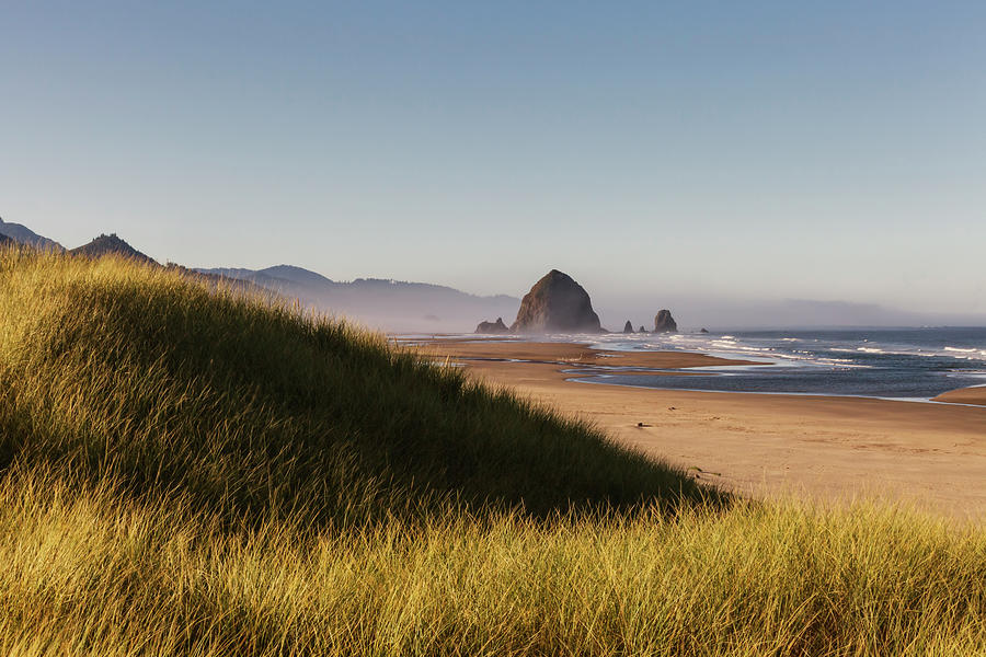 Haystack Rock Seen From Dunes Photograph by Sawaya Photography