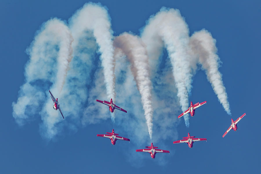 7 Inverted Snowbirds by Donna Corless