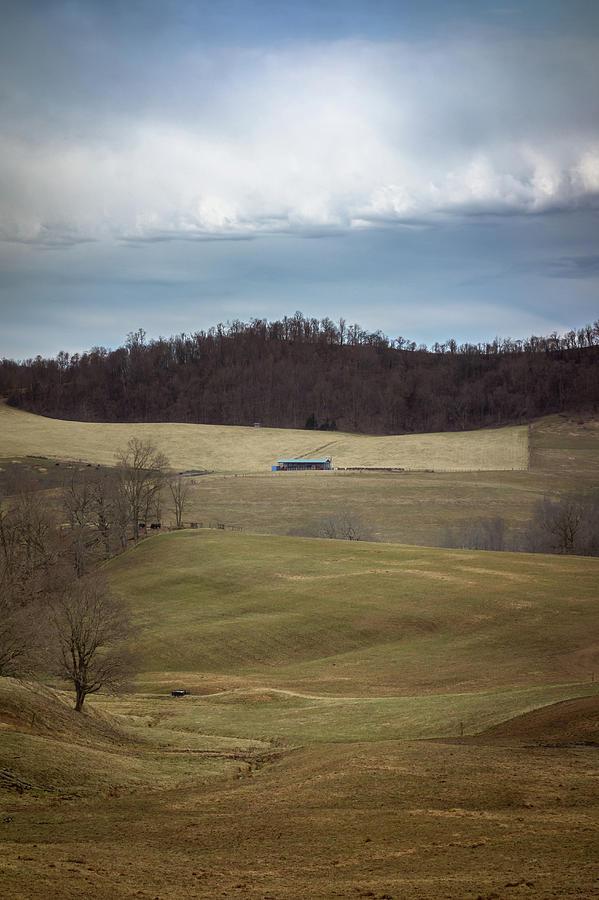 Mylan Park Landscape by Steve Konya II