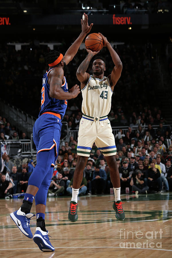 New York Knicks V Milwaukee Bucks Photograph by Gary Dineen