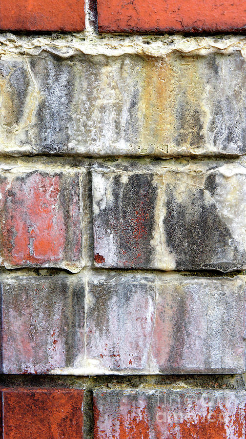 Old brick wall by Tom Gowanlock