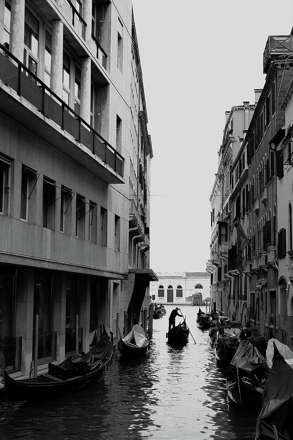 71st Venice Film Festival - Alternative Photograph by Gareth Cattermole