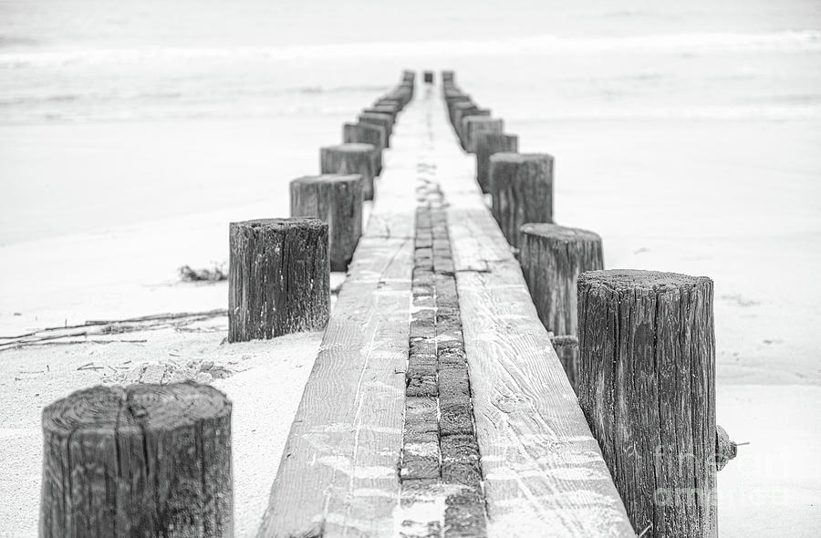 Folly Beach - Charleston South Carolina Photograph