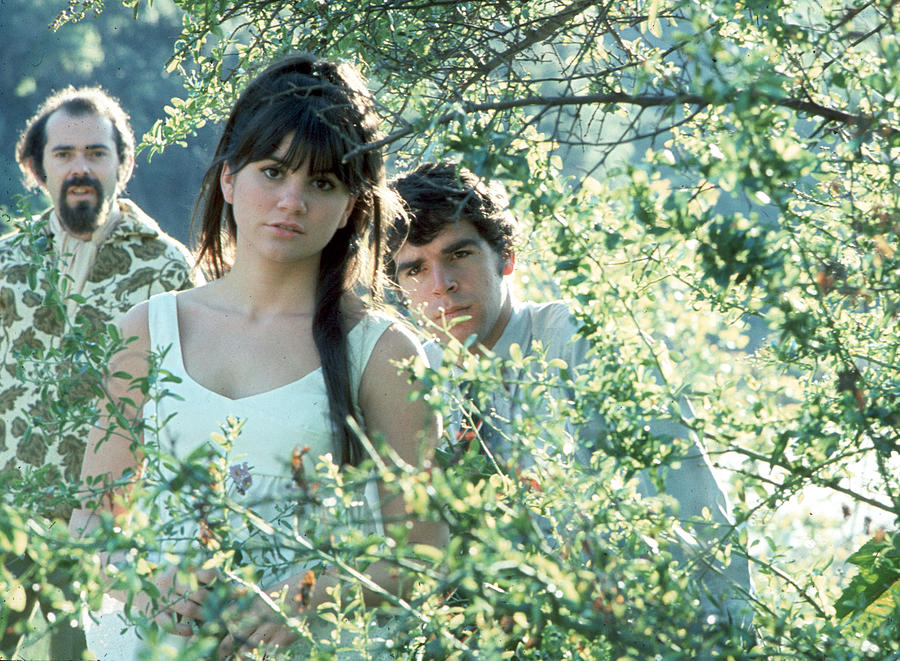 Photo Of Linda Ronstadt Photograph by Michael Ochs Archives