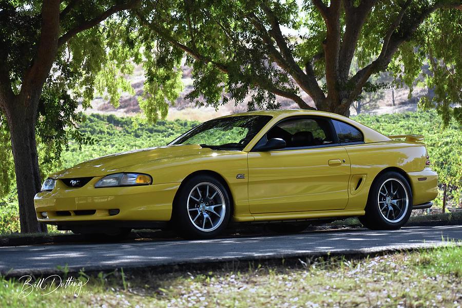 94 Mustang Gt Photograph By Bill Dutting