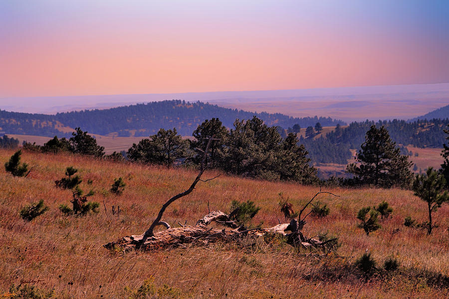 Autumn Day at Custer State Park South Dakota by Gerlinde Keating - Galleria GK Keating Associates Inc