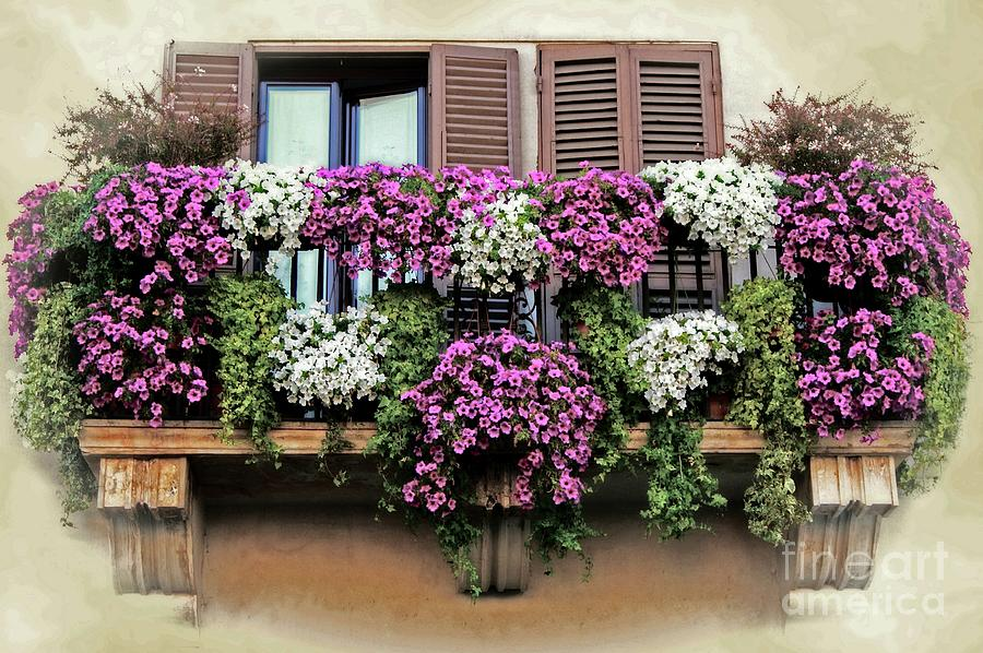 A Balcony in Rome by David Birchall