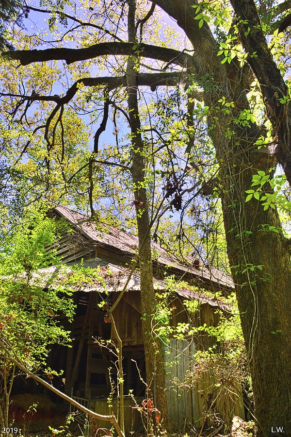 A Barn Among The Trees Vertical by Lisa Wooten