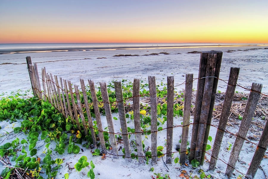 A Beach Fence At Sunset On Hilton Head Photograph by Rachid Dahnoun