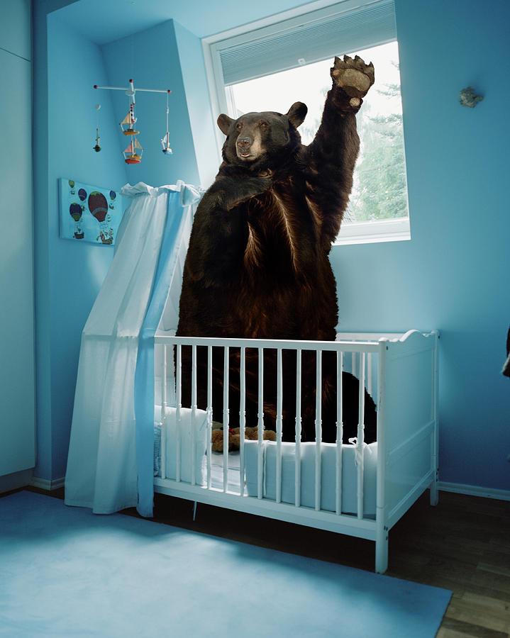 A Bear Inside A Crib In A Blue Room Photograph by Matthias Clamer