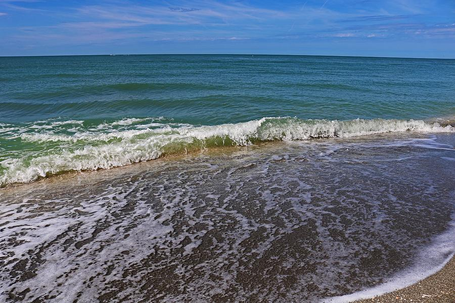 A Bit of Captiva by Michiale Schneider
