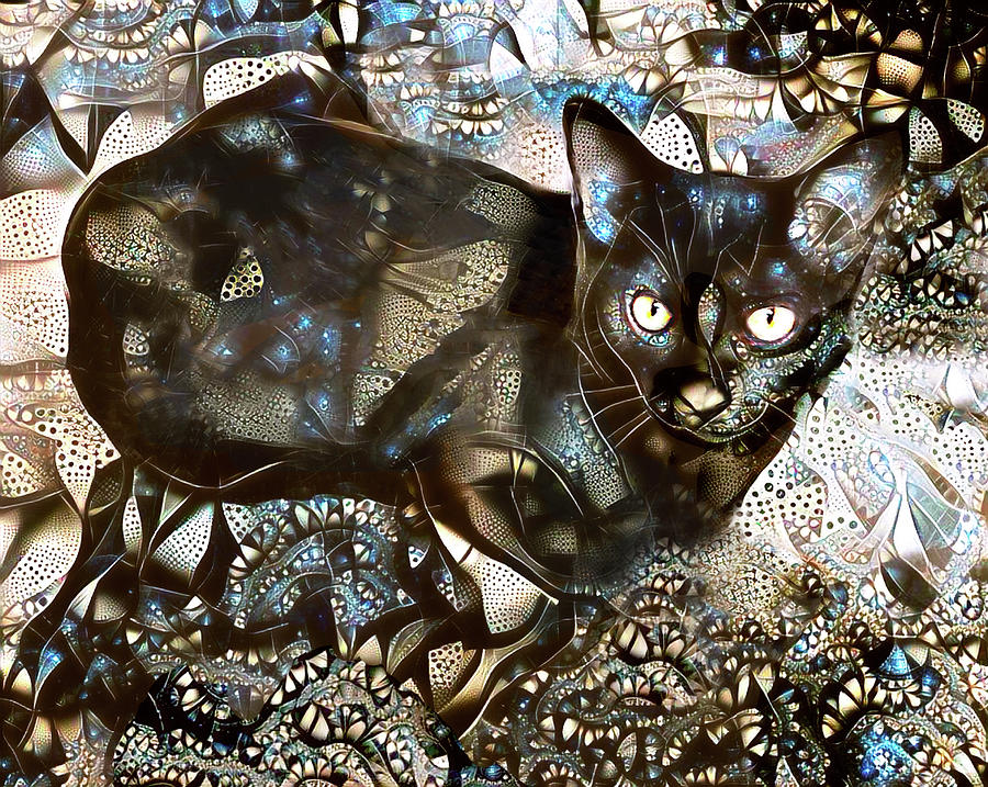 A Black Cat Named Versace by Peggy Collins