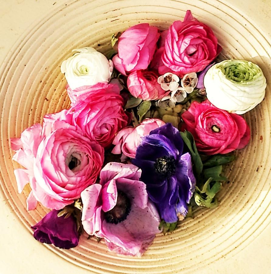 A bowl of romance by Rosita Larsson