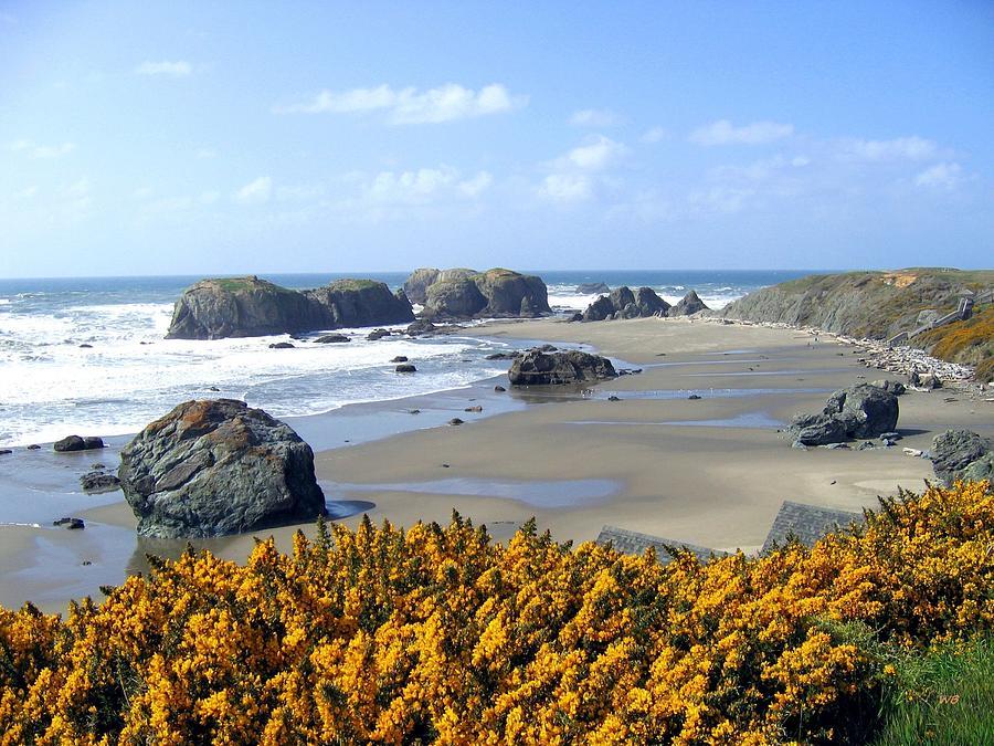 A Breathtaking Beach by Will Borden