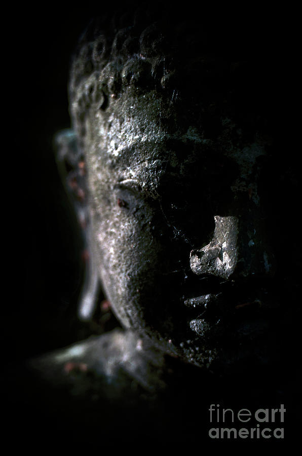 A Buddha Statue In The Garden Of Zen Temple Ryumonji Illuminated By The Last Sun Rays Of The Day by Unknown