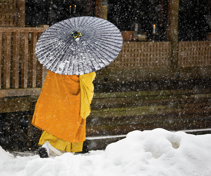 A Buddhist Monk Walks Through A Snow Photograph by Mint Images - Art Wolfe