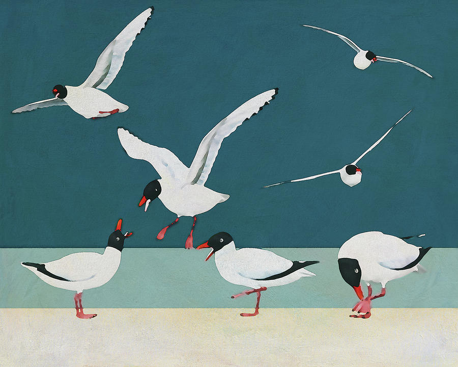 A Bunch of Black Heade Seagulls on the Beach by Jan Keteleer