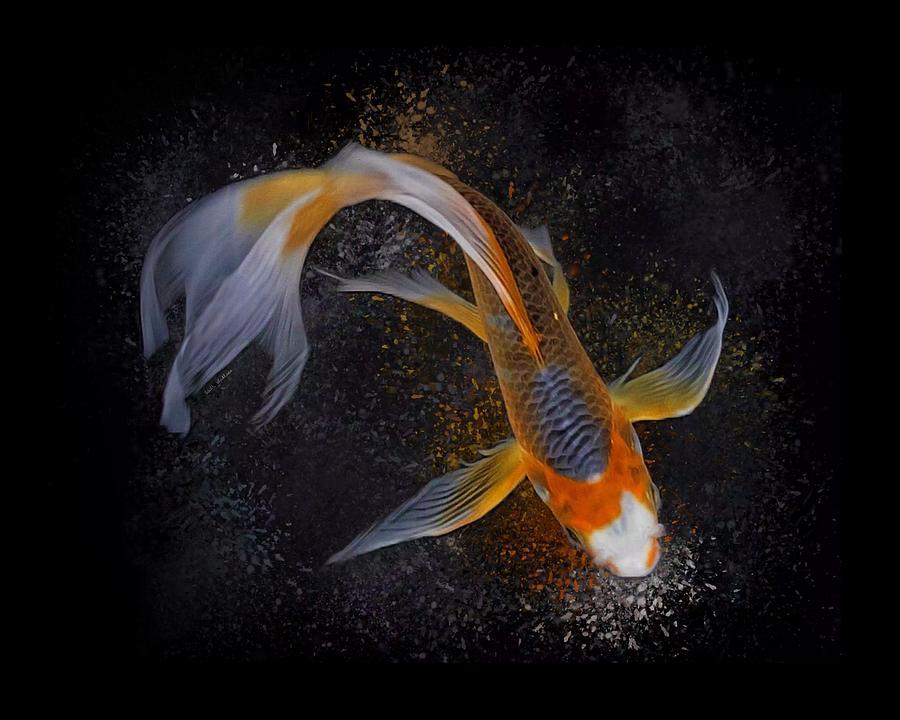 A Butterfly Asagi Koi Fish Digital Art by Scott Wallace Digital Designs
