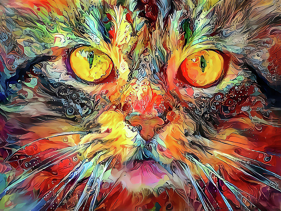 A Cat Of Many Colors by HH Photography of Florida