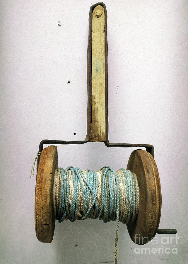 String Photograph - A Cause To Twine  by Steven Digman
