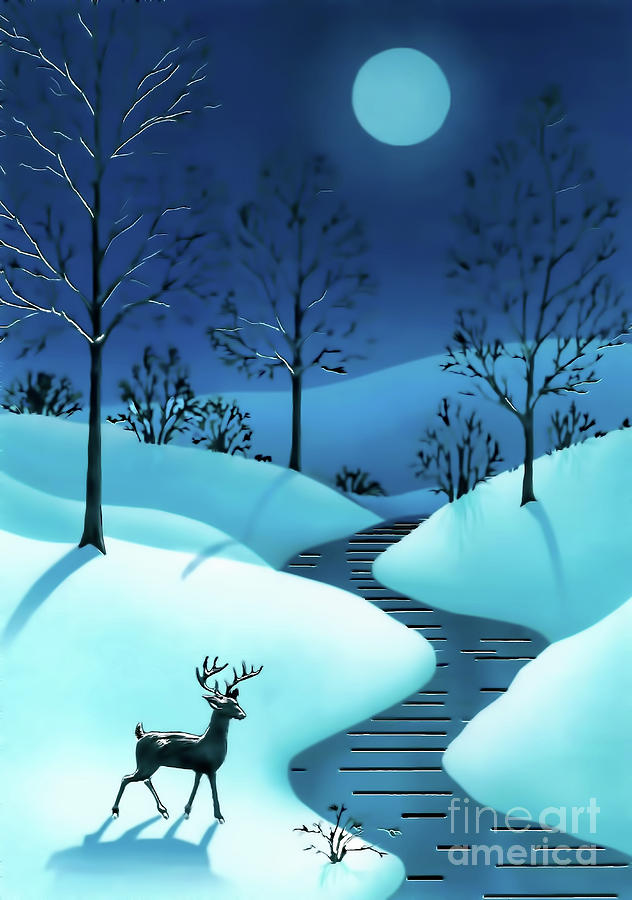 A Cold Winter Night by D Hackett