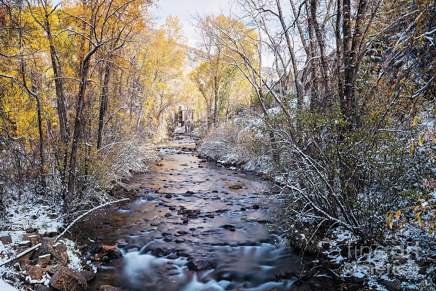 A Confluence of Seasons Fall And Winter Roaring Fork River - Aspen Colorado by Silvio Ligutti