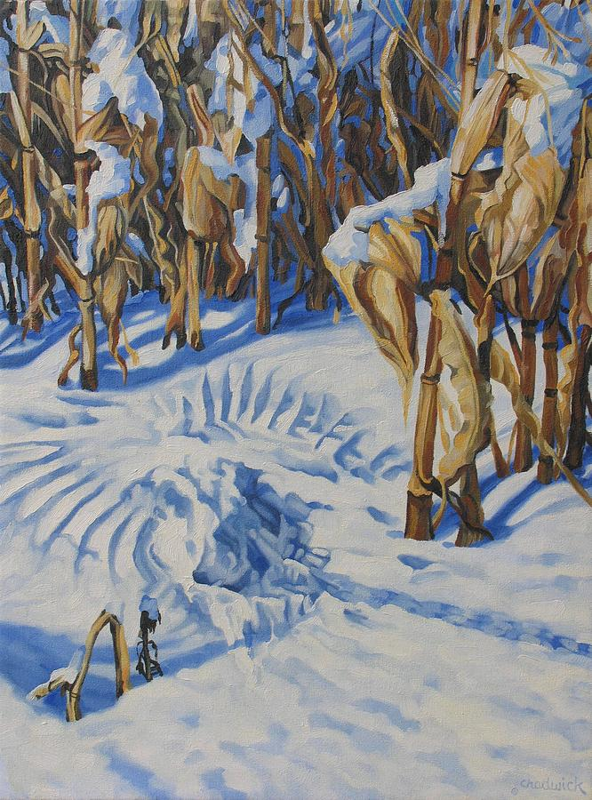 A Corn Stalk by Phil Chadwick
