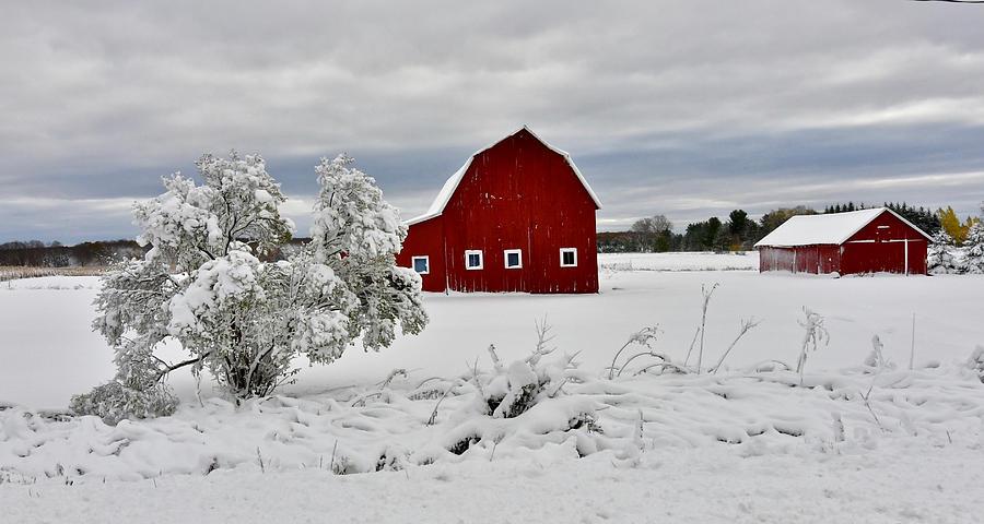 A Crisp Winter Day 0832 Photograph