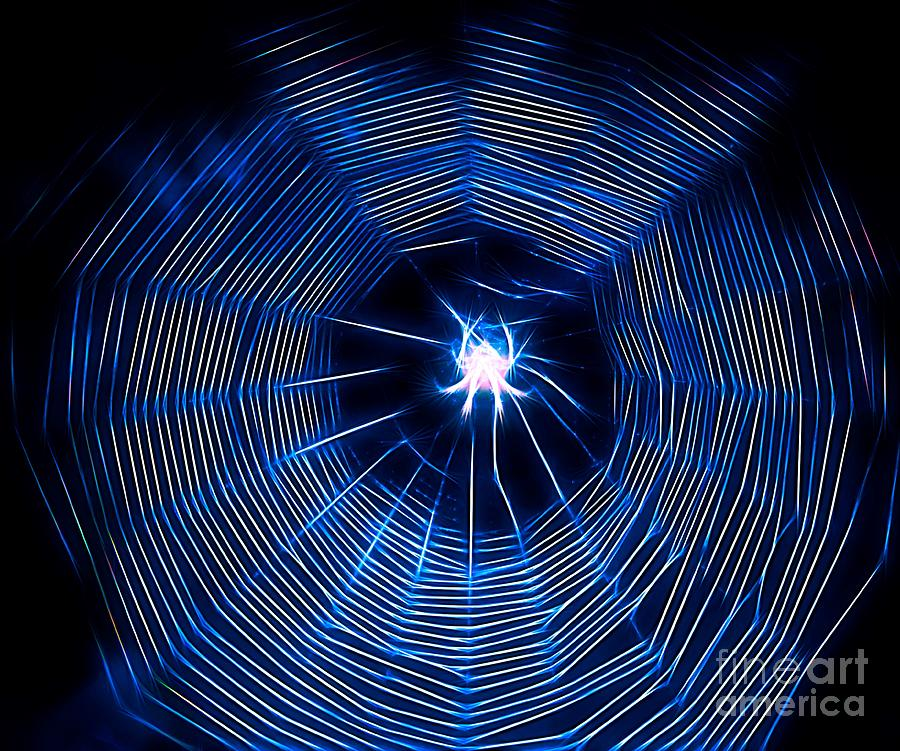 A Different Type of Spider and Web by Karen Silvestri