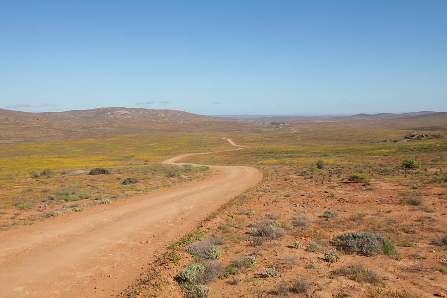 A Dirt Road Winds Through The Barren Photograph by Anthony Grote