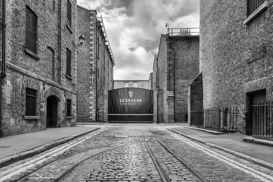 A Dublin Icon by Georgia Fowler
