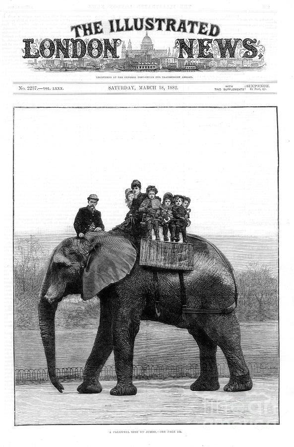A Farewell Ride On Jumbo, London Zoo Drawing by Print Collector