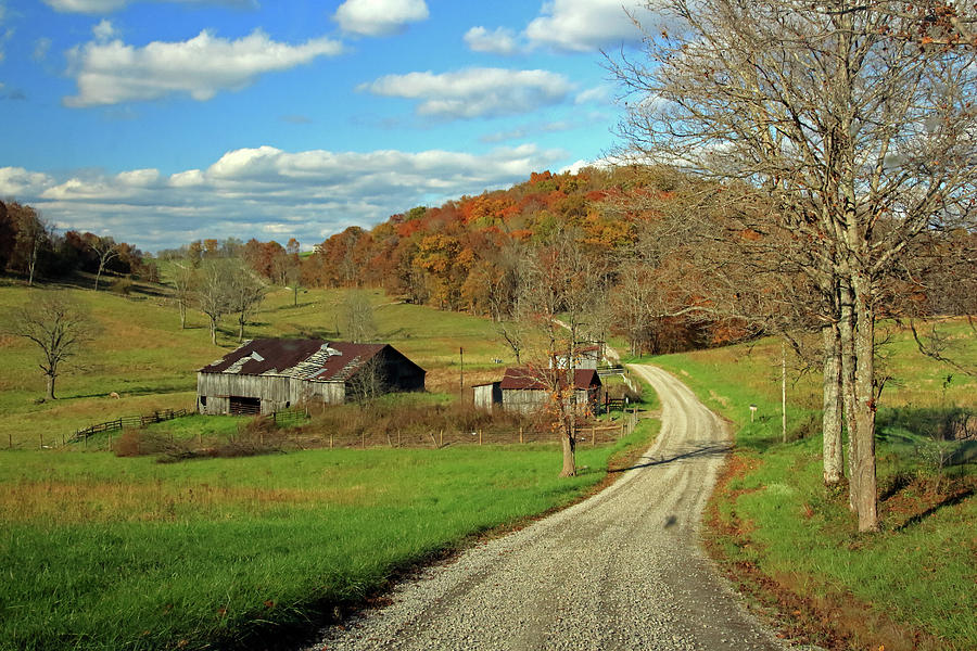 A Farm on an Autumn Day by Angela Murdock