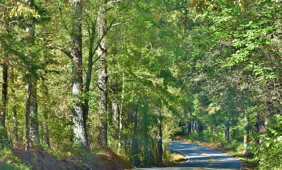 A Favorite Road by Eileen Brymer