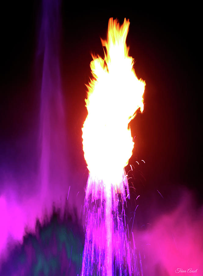 A Flaming Fountain in Pink by Trina Ansel