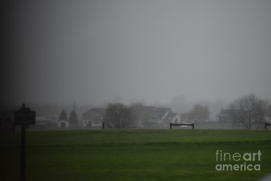 A Foggy Spring Evening by Christine Clark