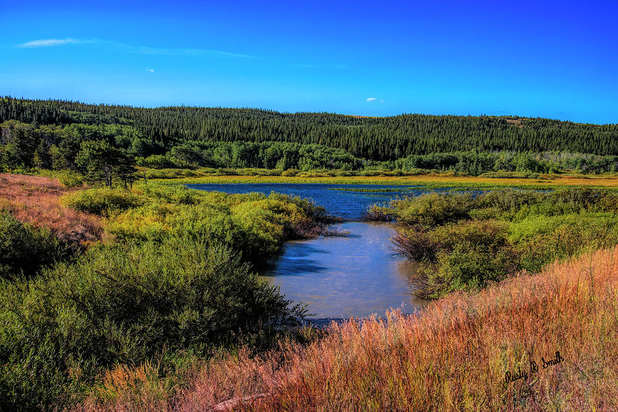 A fresh water marsh. by Rusty R Smith