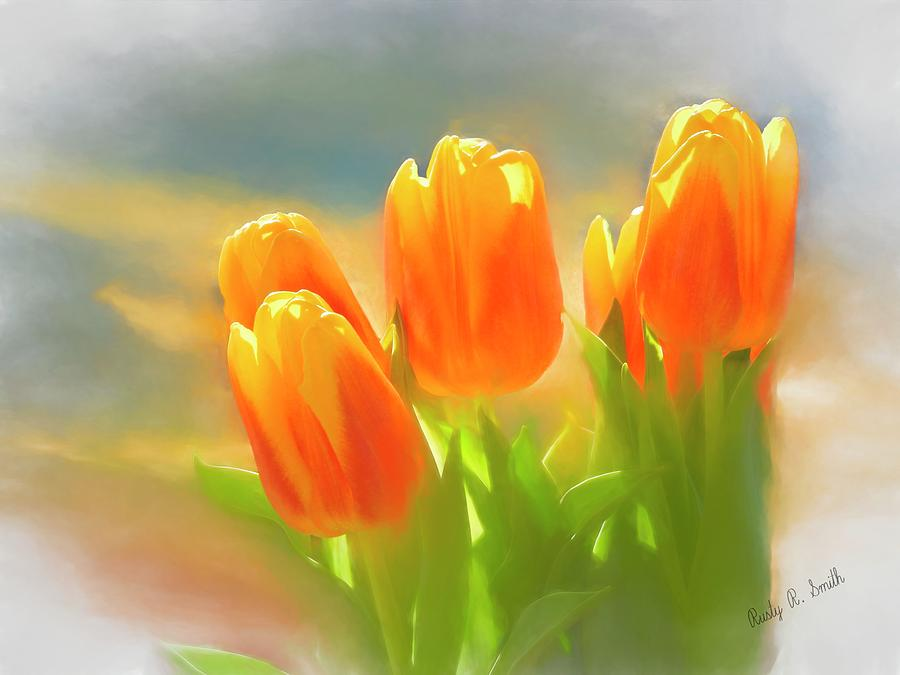 A group of orange and yellow tulips. by Rusty R Smith