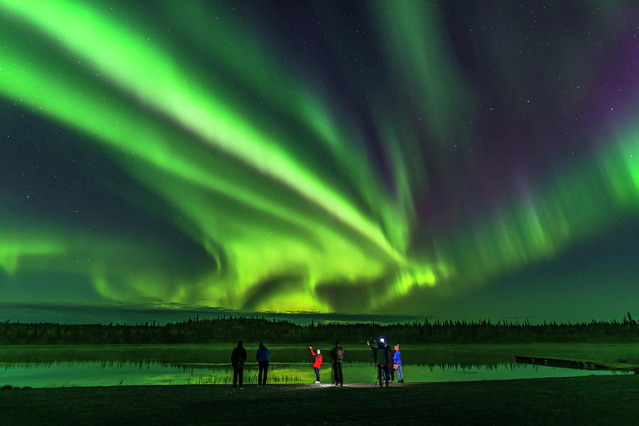 A Group Of Tourists Take Aurora Selfies by Alan Dyer