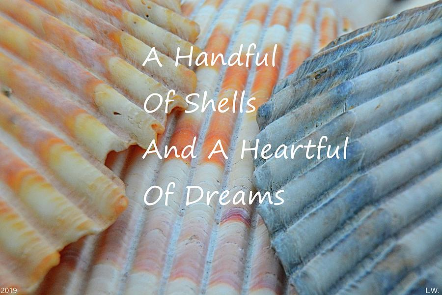 A Handful Of Shells And A Heartful Of Dreams by Lisa Wooten