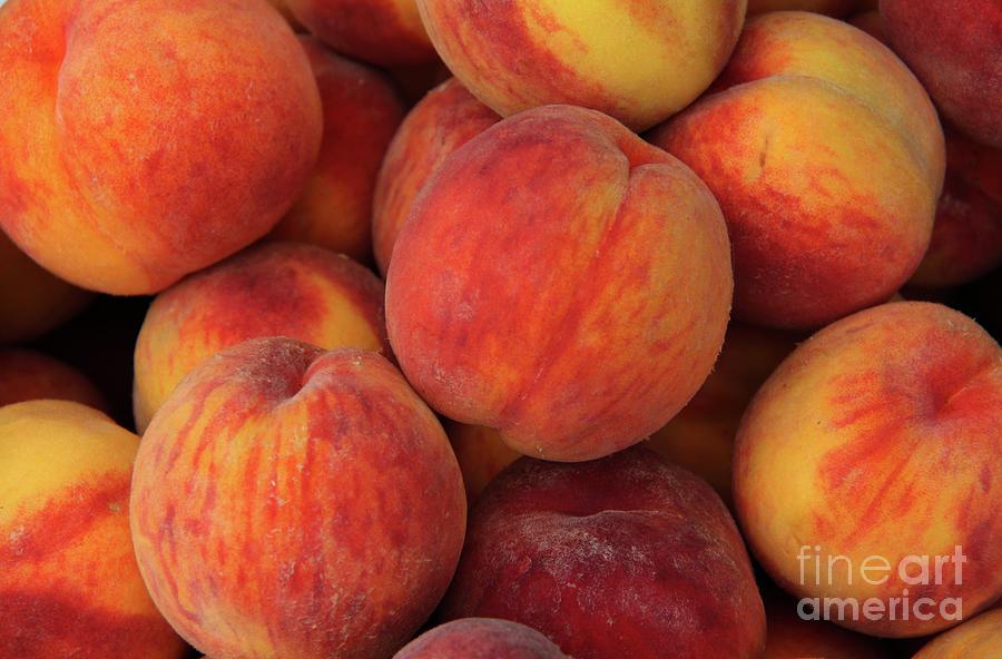 A Heap Of Ripe Peaches Prunus Persica Photograph by Zen Rial