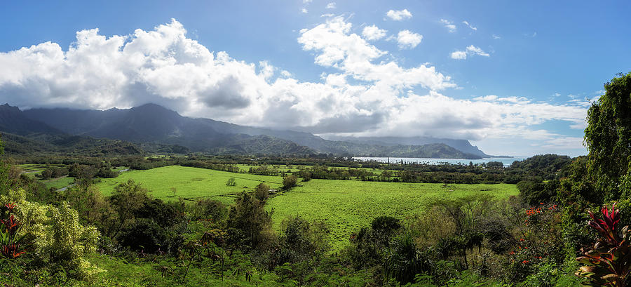 A Land Called Hanalei by Belinda Greb
